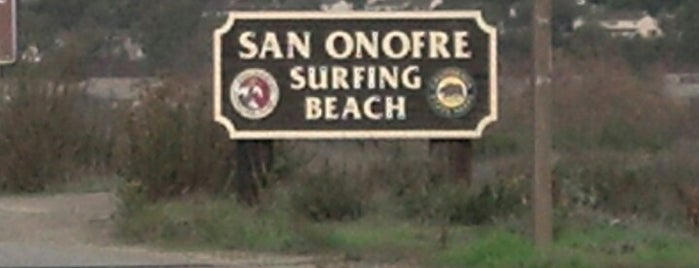 San Onofre State Beach is one of san clemente.
