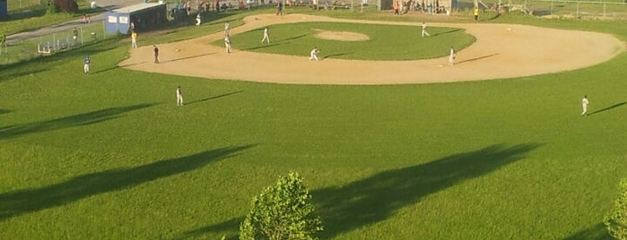 American Legion Baseball Fields is one of Anything sports.