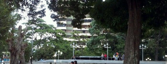 Plaza Los Mangos is one of Plazas, Parques, Zoologicos Y Algo Mas.