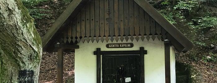 Szent fa forrás is one of Budai hegység/Pilis.