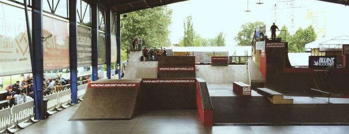 Skatepark is one of Brusle.