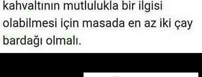 Arçelik is one of antalya.