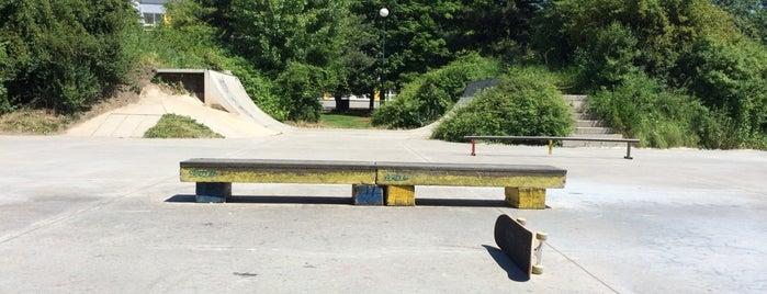 Skatepark Prosek is one of Skate.