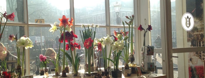 Amsterdam Tulip Museum is one of Museum/Cultural.