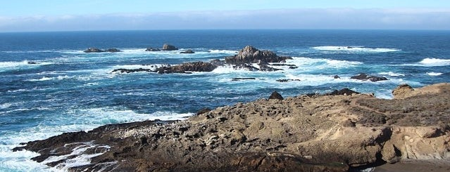 Sea Lion Point Trail is one of Monterey Trip.