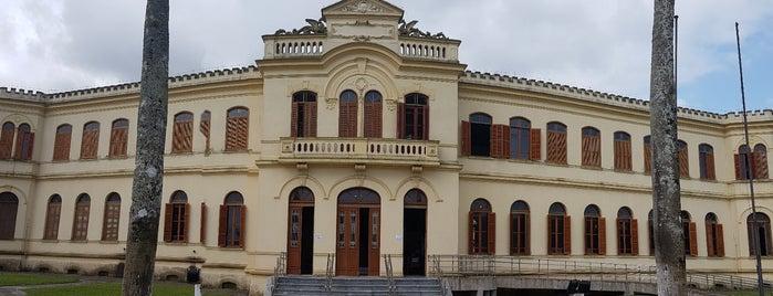 Museu de Pesca is one of Santos Cultural.