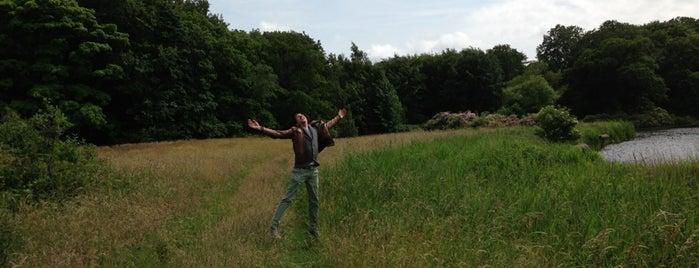 Landgoed de Horsten is one of Parks & Outdoors : Leiden.