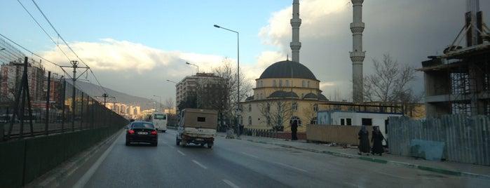 Duaçınarı is one of The 20 best value restaurants in Bursa.