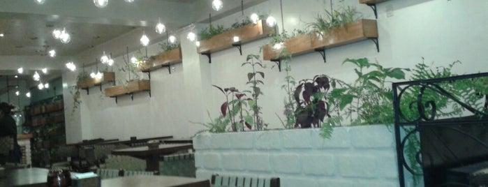 Cafe Morena is one of Restaurantes Visitados.
