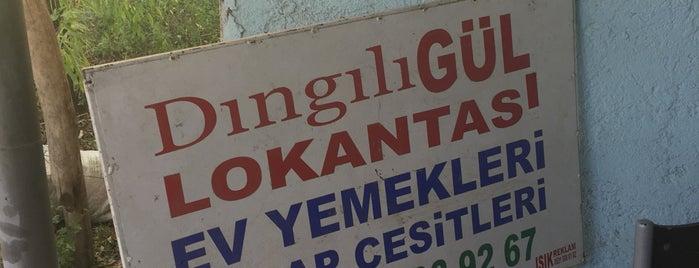 Dıngılı Gül Lokantası is one of Türkiye Geneli <3.