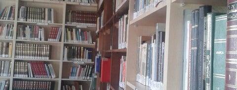 Islamic University of Europe is one of yeni yerler.