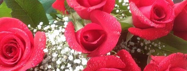Popadopolous Flowers is one of The 13 Best Flower Shops in San Francisco.