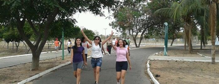Parque Josepha Coelho is one of Meus Locais.