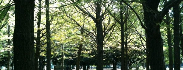 Yoyogi Park is one of Japan must-dos!.