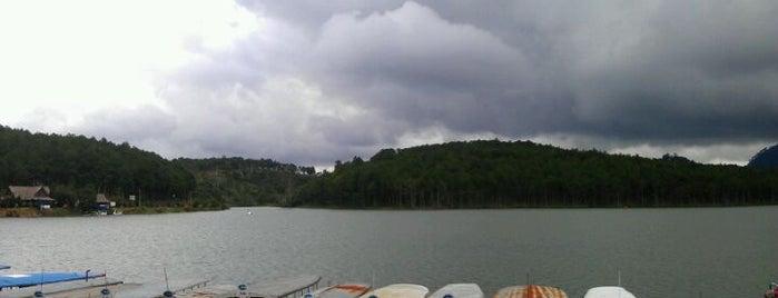 Tuyen Lam Lake is one of Đà Lạt.