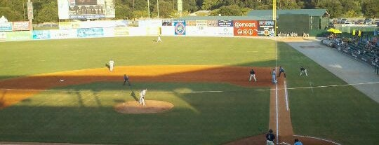 Hank Aaron Stadium is one of MiLB Southern League.