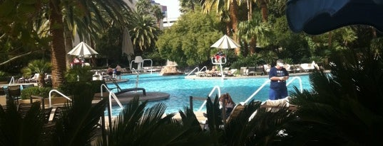 The Mirage Pool & Cabanas is one of Las Vegas.
