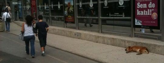 Söğütlüçeşme Metrobüs Durağı is one of Metrobüs Durakları.