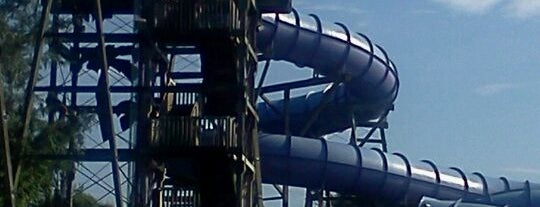 Adventure Island is one of Tampa Attractions.