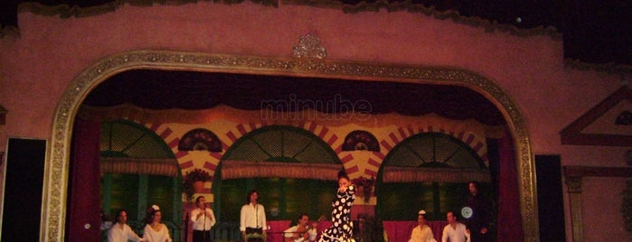 Tablao Flamenco El Palacio Andaluz is one of Tablaos y lugares con ambiente flamenco en Sevilla.