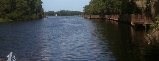 Lake Tarpon is one of Things to do in Tampa Bay.