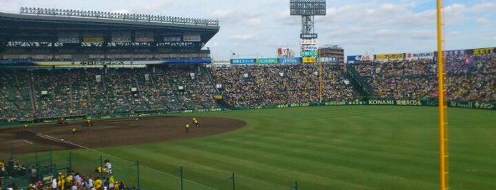 Hanshin Koshien Stadium is one of 読売巨人軍.