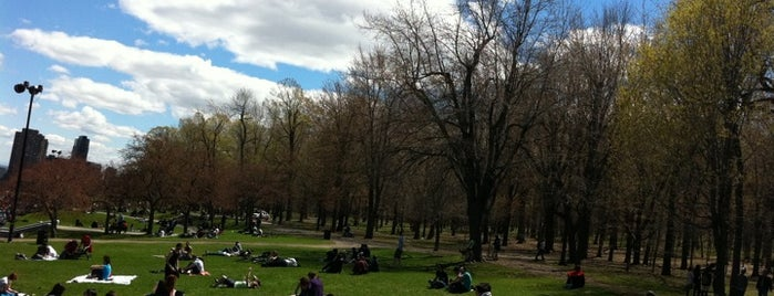 Mount Royal Park is one of My Montreal State Of Mind.