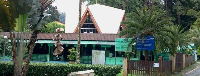 Masjid Jamek FRIM is one of Baitullah : Masjid & Surau.