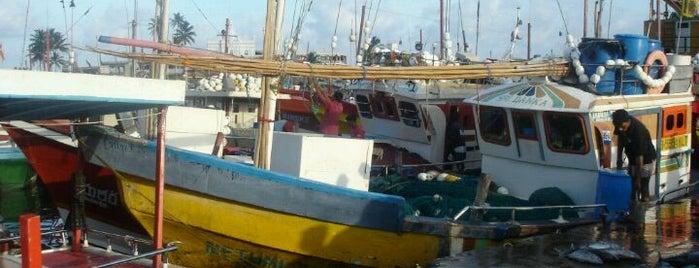 Beruwala Fishing Harbor is one of Trips / Sri Lanka.