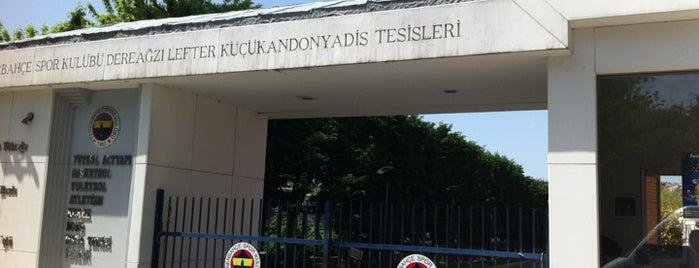 Fenerbahçe SK Dereağzı Lefter Küçükandonyadis Tesisleri is one of İstanblue.
