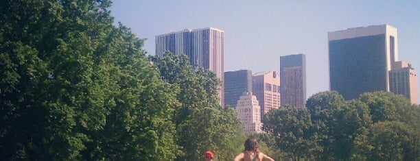 Central Park is one of Best outdoor reading and thinking spots.