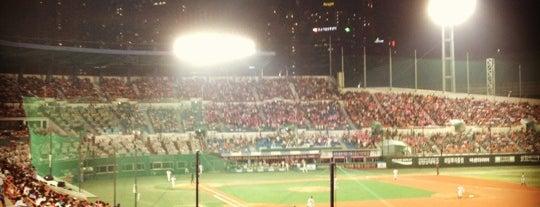 Mokdong Baseball Stadium is one of Swarming Places in S.Korea.