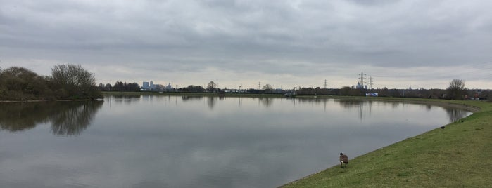 Walthamstow Wetlands is one of To Do.