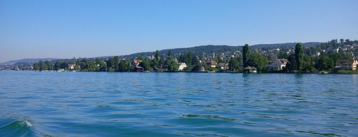 Zürichsee is one of Zurich Guide.