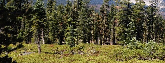 Lassen Volcanic National Park is one of National Parks.