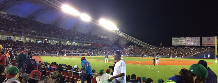 Estadio de Beisbol Charros de Jalisco is one of Espectáculos @ GDL.