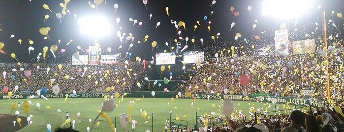 Hanshin Koshien Stadium is one of Japan Baseball Studium.