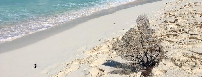 Playa Paraiso is one of Kuba.
