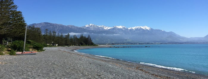 Kaikoura is one of New Zealand.