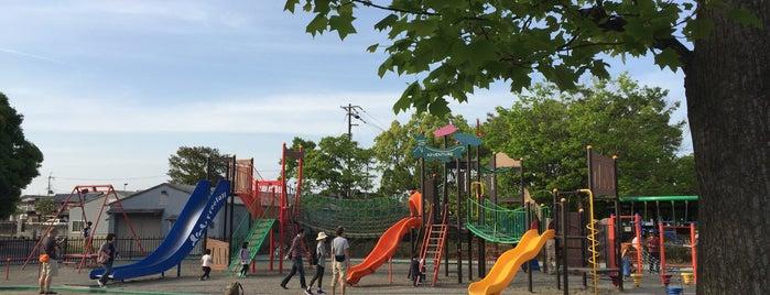 金亀公園 is one of 日本の都市公園100選.
