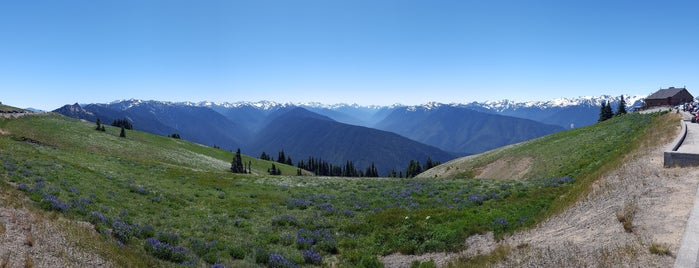 Hurricane Ridge Visitor Center is one of Olympic National Park 💚.