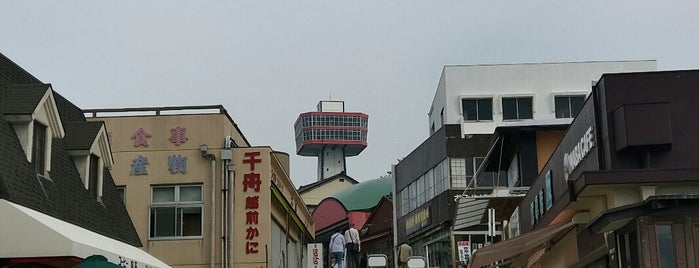 Tojinbo Tower is one of Observation Towers @ Japan.