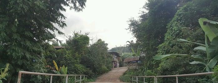 สะพานปลาสบมาง is one of ลำพูน, ลำปาง, แพร่, น่าน, อุตรดิตถ์.