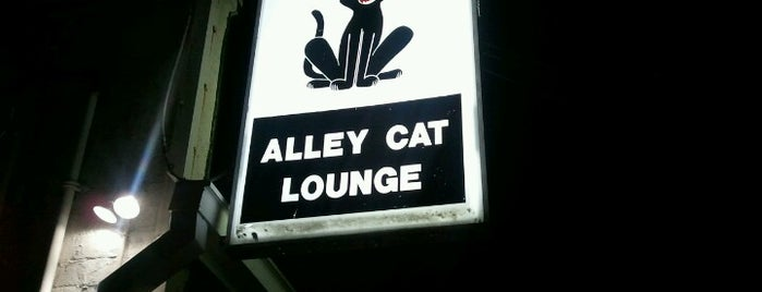 Alley Cat Lounge is one of Top picks for Nightclubs.