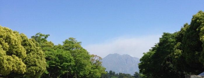 鹿児島県立 吉野公園 is one of 日本の都市公園100選.