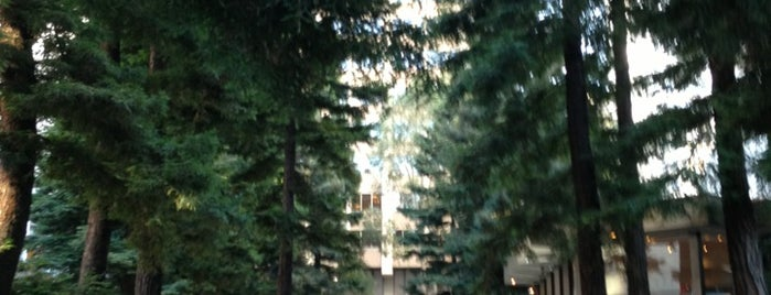 Transamerica Redwood Park is one of CALI.