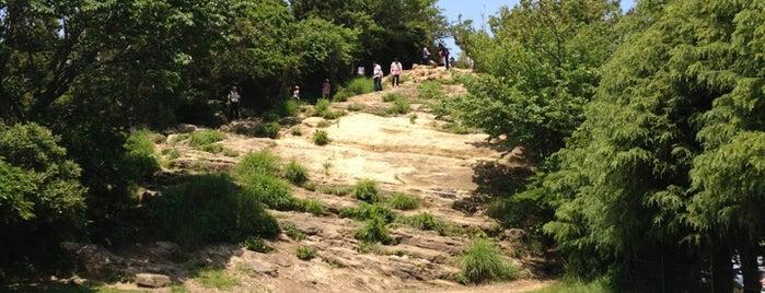 大平山 - 天園ハイキングコース is one of 三浦半島の山々.