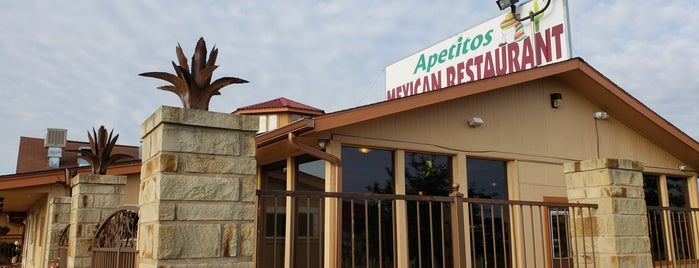 Authentic Mexican Restaurant San Antonio Tx