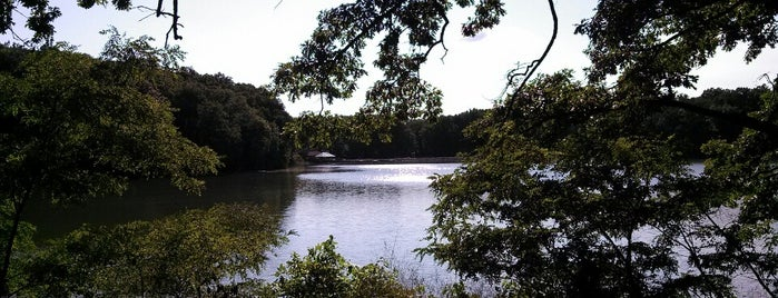 Beaver Dam State Park is one of Illinois: State and National Parks.