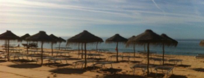 Praia da Marina is one of Algarve.